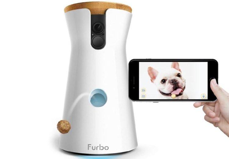 Furbo, caméra de surveillance pour chien avec distributeur de friandises intégré